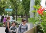 BICSKEI NAPOK - Virágözön